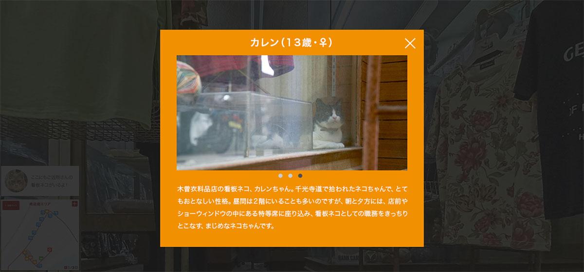 Hiroshima cats
